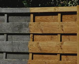 How to choose your garden fence
