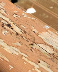 Deck with flaking Ronseal stain
