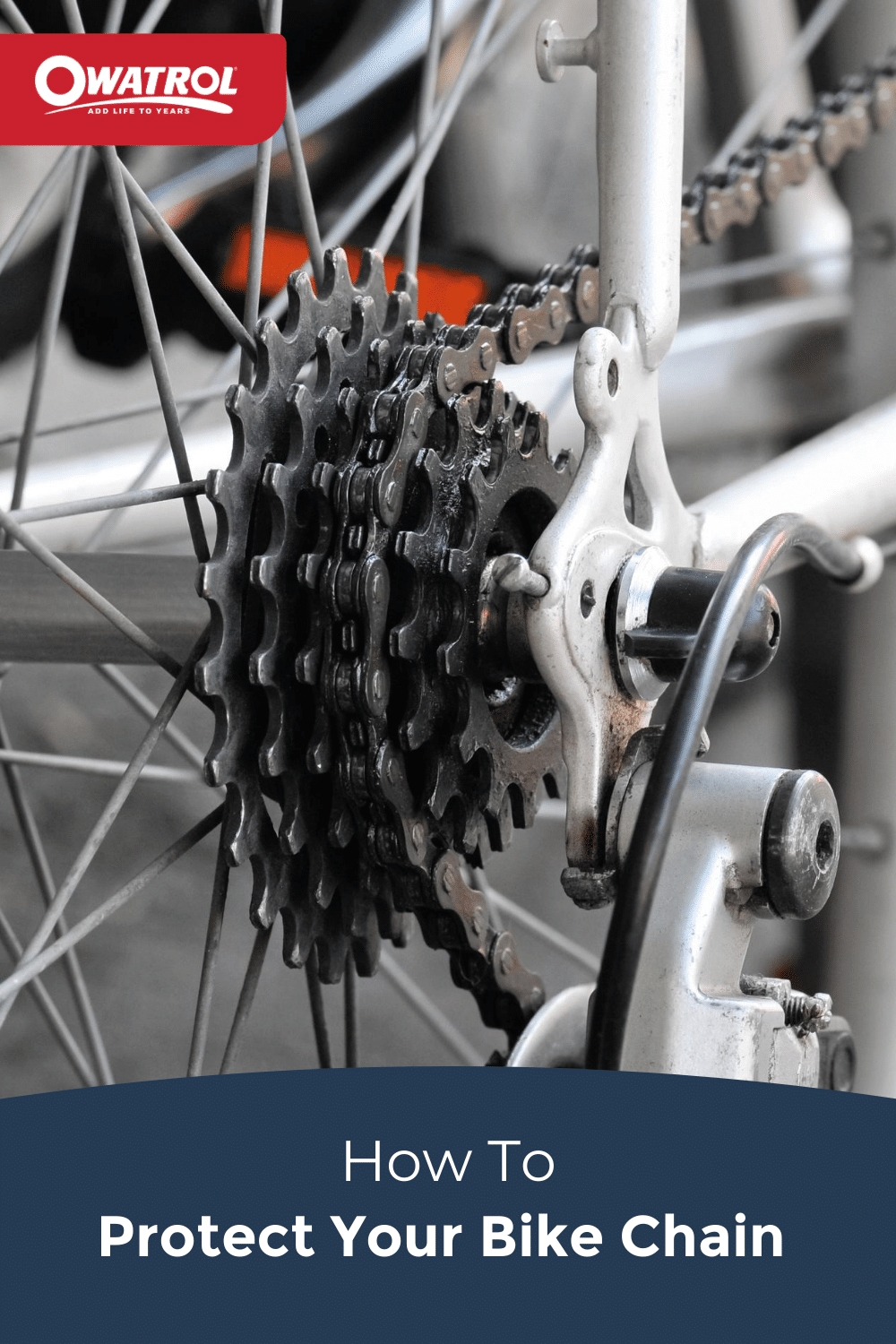 How to protect your bike chain - Pinterest